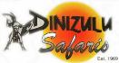 Dinizulu-LogoT-131-x-701